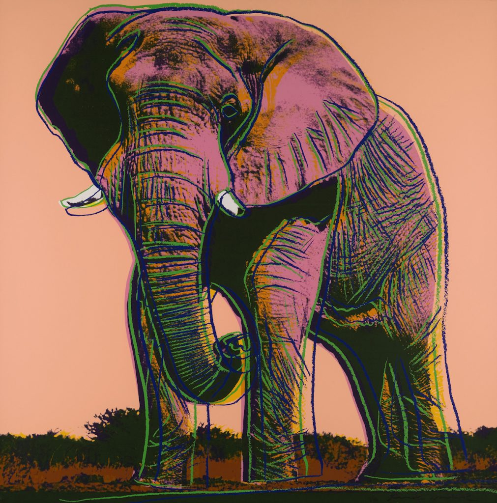 elephant by andy warhol guy hepner