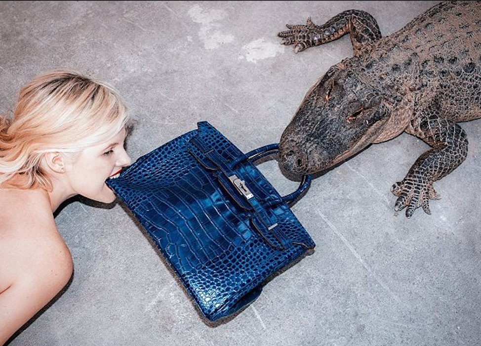 Gator Birkin III by Tyler Shields