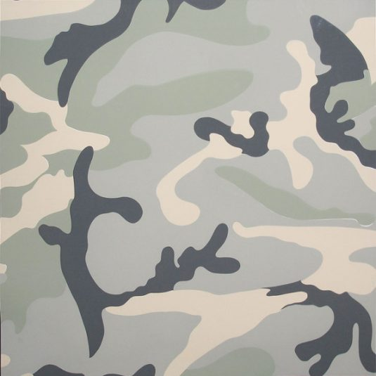 camouflage 412 by andy warhol guy hepner. Black Bedroom Furniture Sets. Home Design Ideas