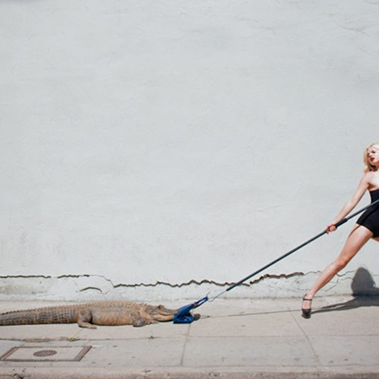 tyler shields, photography, fashion,shields, hermes
