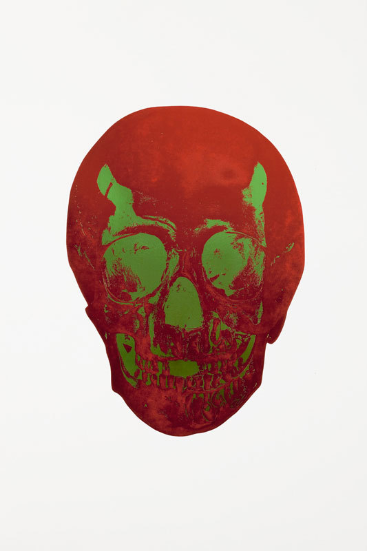 Chilli Red Skull by Damien Hirst