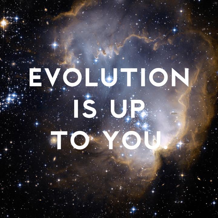 Evolution by Donny Miller
