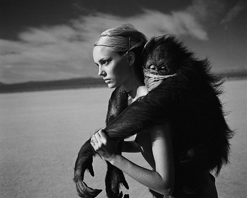 Jamie Rishar Monkey by Michel Comte