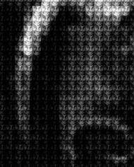 alex guofen cao sudan vs carter detail