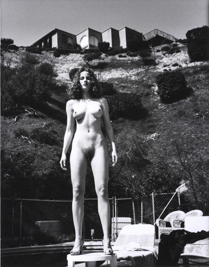 Domestic Nude IV by Helmut Newton