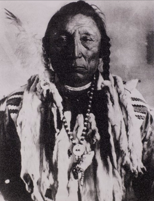 Siksika Chief (Curley Bear) by Russell Young