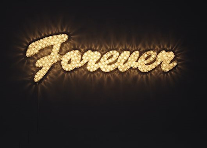 Forever by Noble and Webster