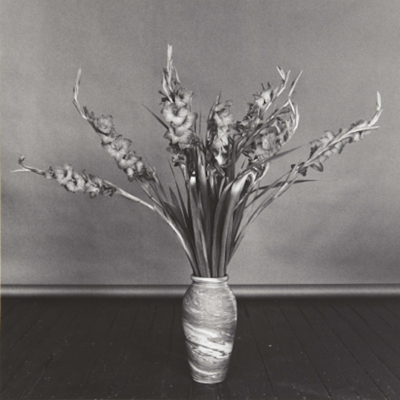 Gladioli by Robert Mapplethorpe , mapplethorpe, robertmapplethorpe