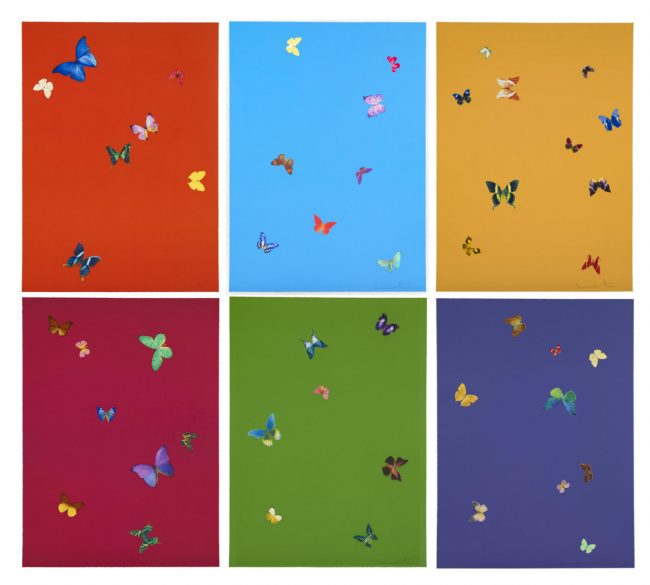 , Damien Hirst: Butterfly Effect