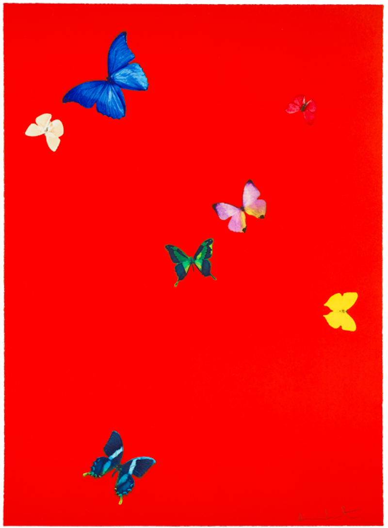 The Wonder Of You Your Feel By Damien Hirst Guy Hepner Art Gallery Prints For Sale Chelsea New York City