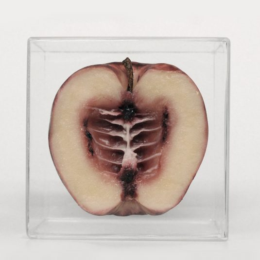 Apple by Mocia Piloni