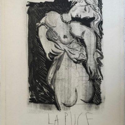 La Puce [Marie-Thérèse] by Picasso