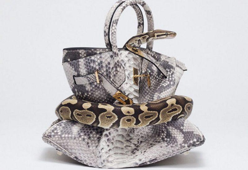 Tyler Shields, Shields, Python, Birkin