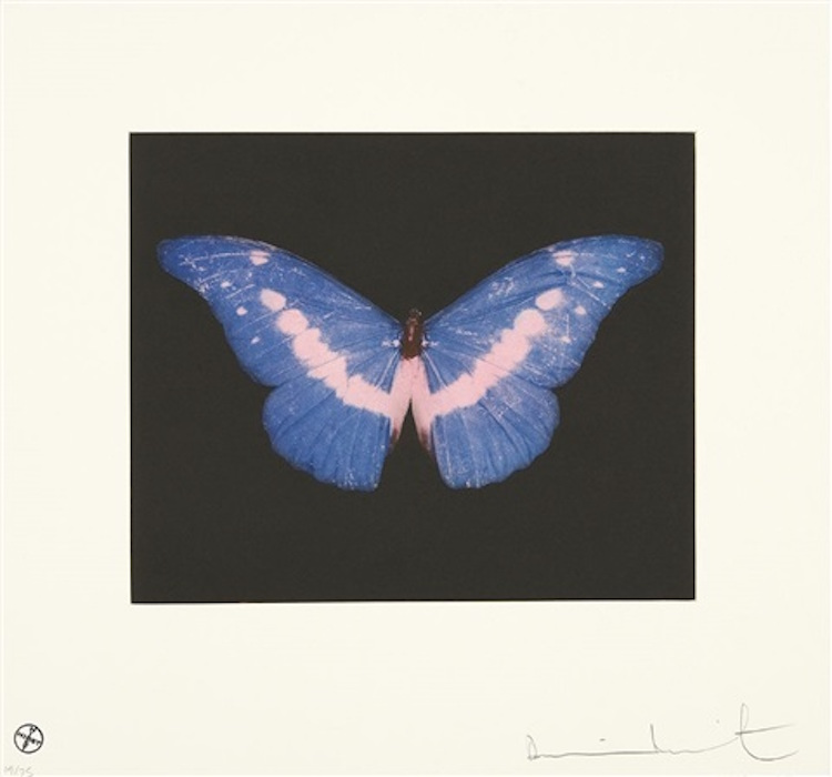To Belong, Butterly Landscape by Damien Hirst
