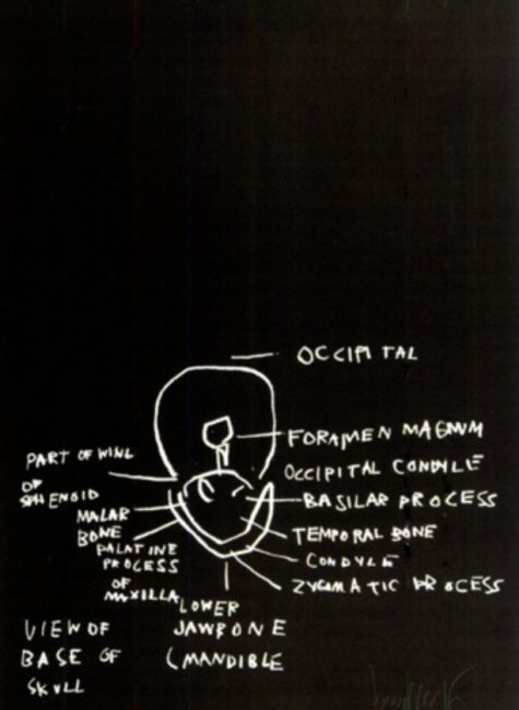 view-of-base-of-skull-basquiat