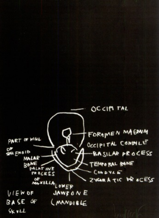 View of Base of Skull by Basquiat