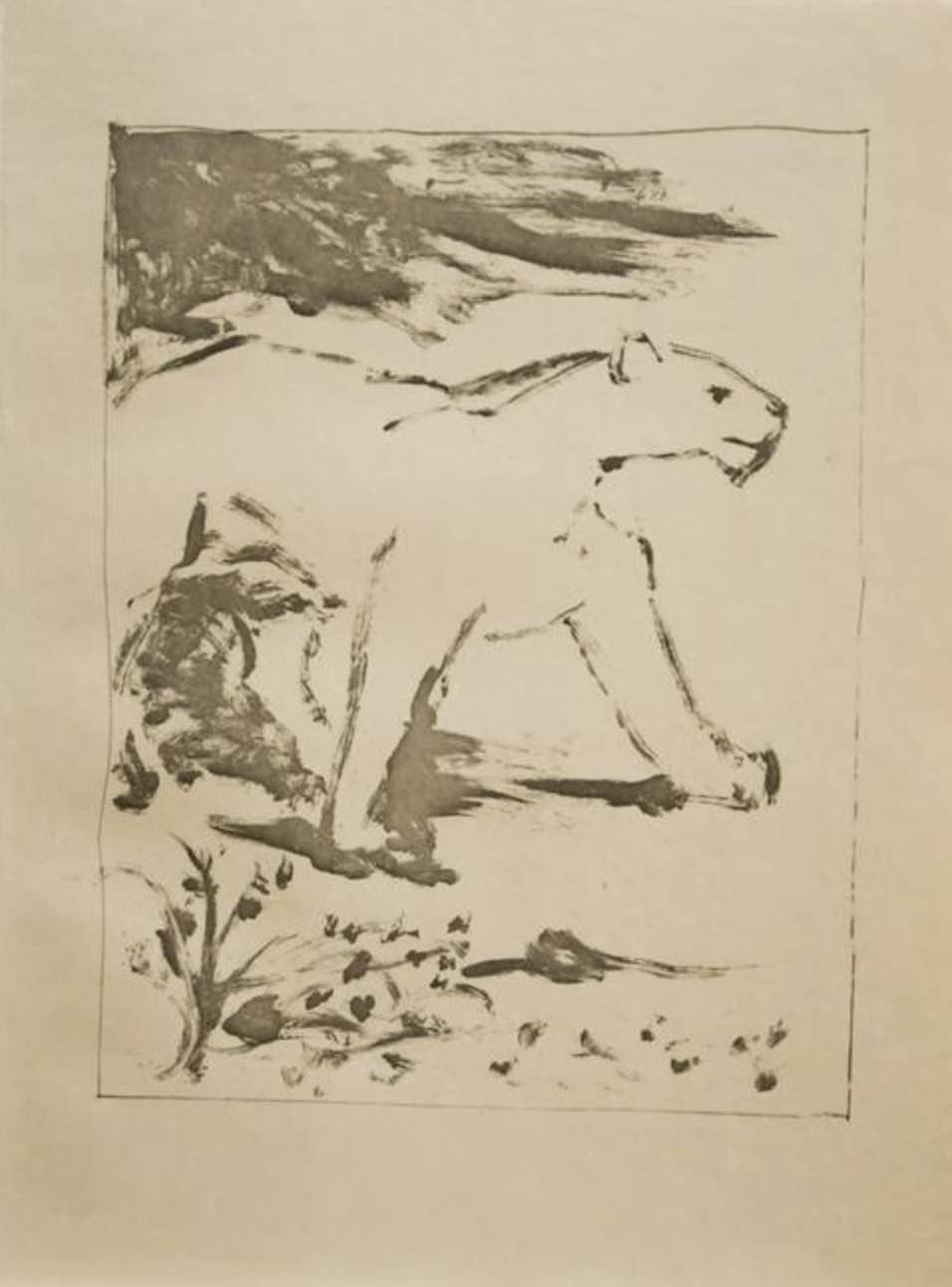 La Lionne by Picasso