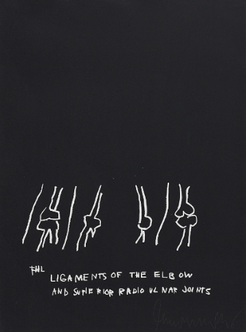 The Ligaments of the Elbow by Jean Michel Basquiat