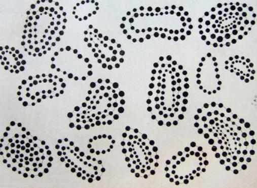 Polka Dots by Yayoi Kusama
