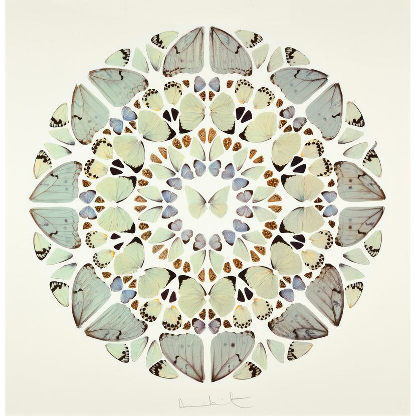 Exaudi Domine by Damien Hirst