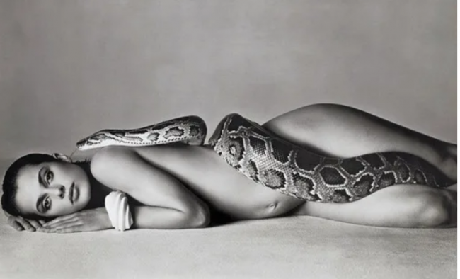 Richard Avedon. Nastassja Kinski with Serpent , 1981
