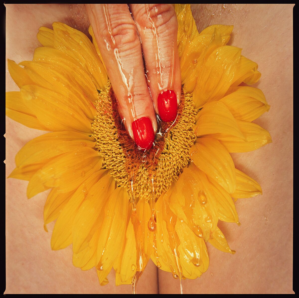 Sunflower by Tyler Shields