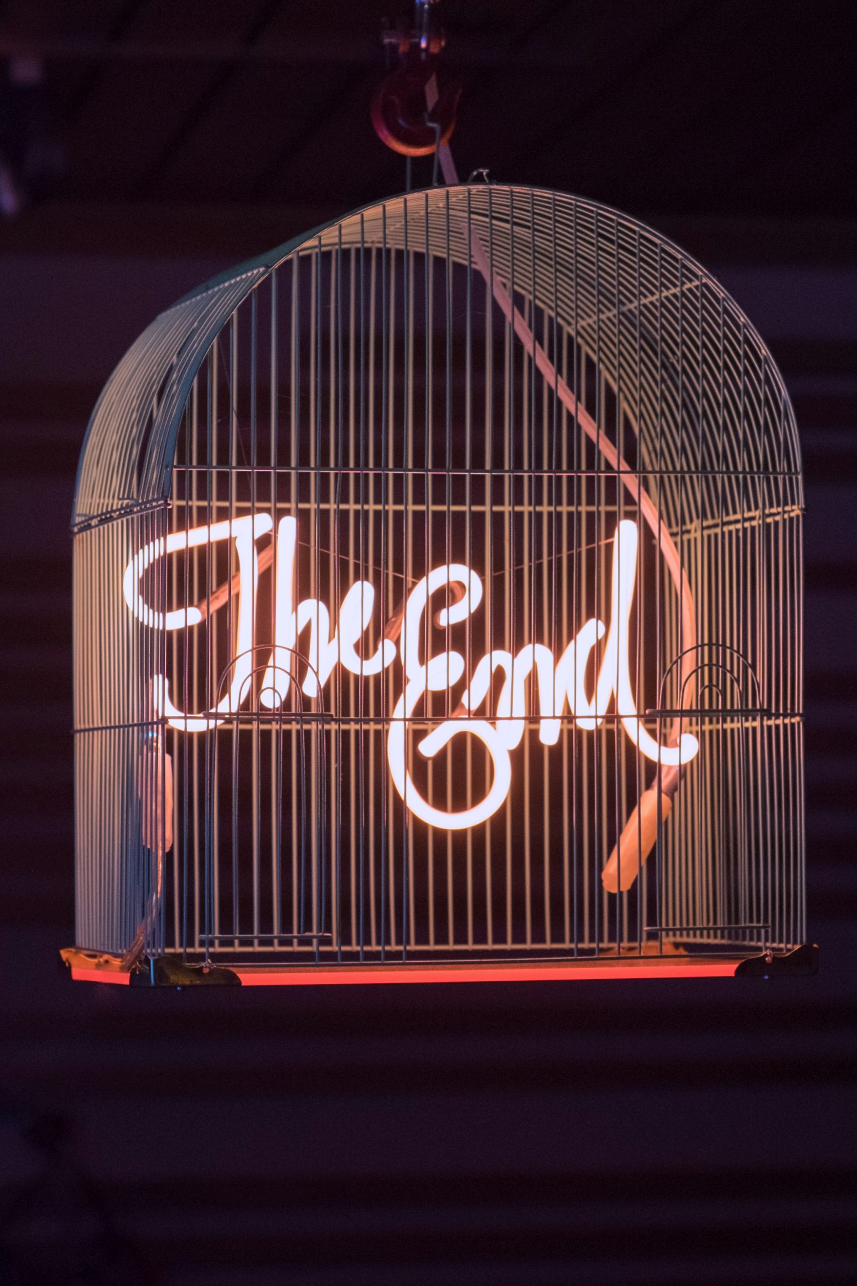 The End (Birdcage) by Olivia Steele