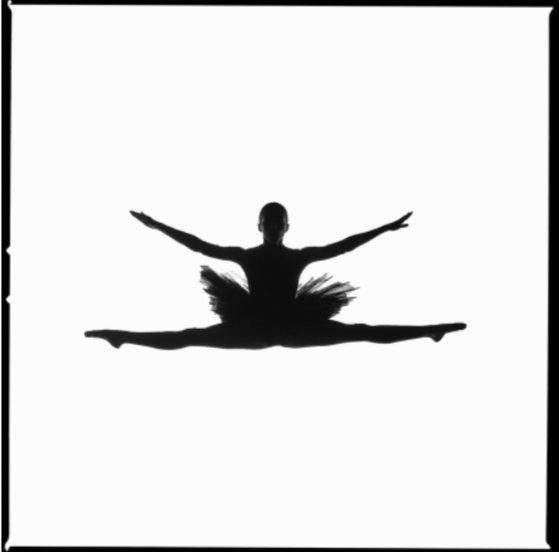 Tyler Shields: The Art of Ballet, Tyler Shields: The Art of Ballet